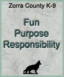 Fun Purpose Responsibility